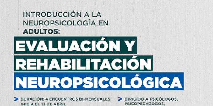 Introducción a la Neuropsicología en Adultos