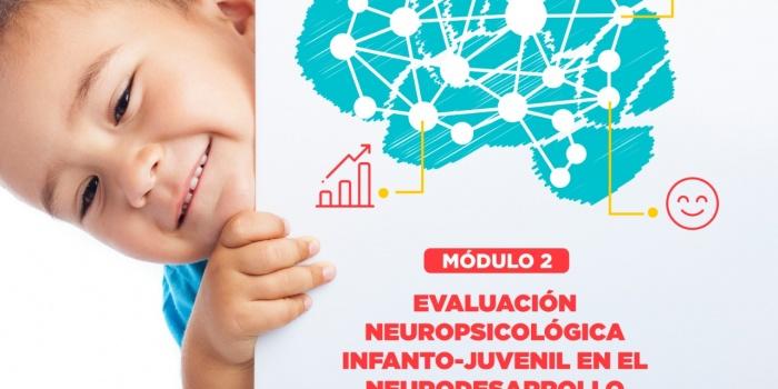 Curso de Neuropsicología Infantil, Aplicaciones a la Clínica y la Educación