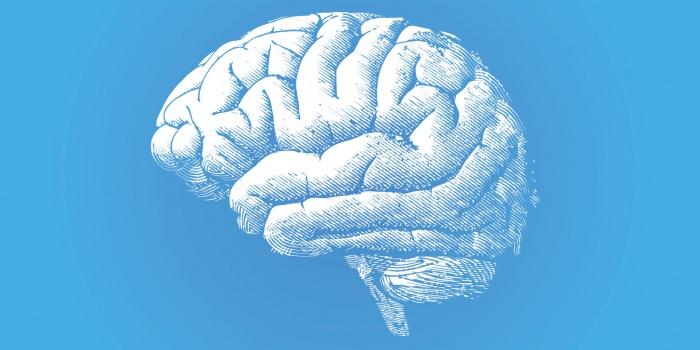 Aportes de la neuropsicología a la psicoterapia: intervenciones clínicas desde los perfiles neuropsicológicos